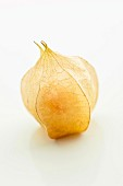 A cape gooseberry (close-up)