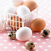 Brown and white eggs in a plastic basket and quail's eggs
