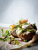 Toasted rye bread with an avocado spread and a poached egg
