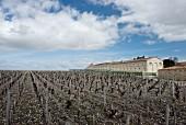 Weingut Mouton-Rothschild (Bordeaux, Frankreich)