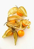 Five physalis on a white surface