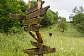 A signpost with lots of ways to freedom, Eichsfeld