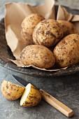 Organic Spunta potatoes from Italy