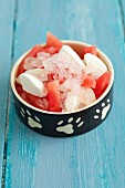 A cold treat for dogs - watermelon, frozen quark and watermelon granita