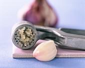 A garlic crusher and garlic