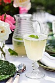 A mint mojito for a summer party