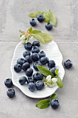 Blueberries with leaves and flowers