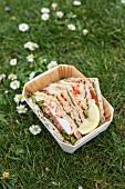 Fladenbrot-Sandwiches in Box auf Wiese