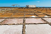 Salt pans at El Carmen Salt Museum on the east coast, Caleta de Fuste, Fuerteventura, Canary Islands, Spain, Europe
