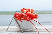 A bowl of lobster shells with the ocean in the background