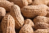 Peanuts (close-up)