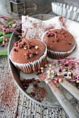 Chocolate muffins with elderberries and cocoa