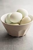 Hühnereier mit grüner Schale in einem Porzellanschälchen