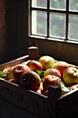Apples in a crate in a barn
