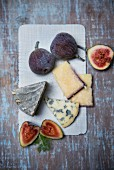 Fourme D'Ambert (French blue cheese) wine hard cheese from Italy with figs and fennel leaves