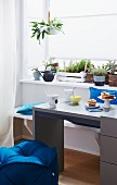 Sideboard mit Auszugstisch vor dem Fenster mit Mini Kräutergarten