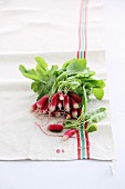 A bunch of radishes on a tea towel