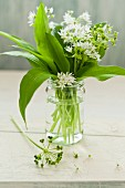 Fresh wild garlic with flowers in a glass of water