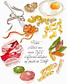 Various types of Italian pasta (illustration)