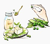 An arrangement of of soy milk, tofu and soya beans (illustration)