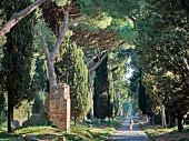 Die Via Appia, Rom