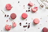 Violette & rosafarbene Macarons (Aufsicht)