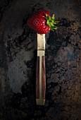 Erdbeere auf Messer (Draufsicht)