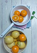 Oranges in an enamel colander, oranges and lemons in a porcelain bowl and fresh mint