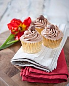 Cupcakes decorated with chocolate mousse and Malteasers