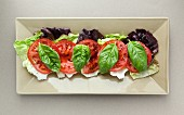 Batavia lettuce leaves topped with tomato and basil