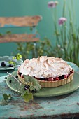 Berry cake with meringue