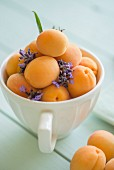 Apricots and lavender flowers in a large cup