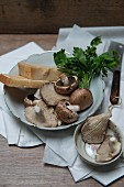 An arrangement of ingredients with mushrooms, oyster mushrooms, Parmesan cheese and parsley
