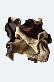 Dried mu-err mushrooms (Auricularia auricula-judae)