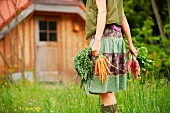 A woman in a garden carrying fresh carrots and radishes