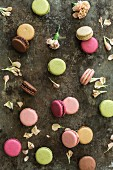 Various different coloured macaroons and flower petals