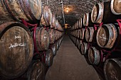 Oak barrels in the cellar of the Thummerer vineyard (Noszvaj, Hungary)