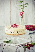 Redcurrant and mascarpone cake