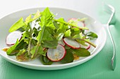 Dandelion salad with radishes
