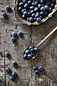 Blueberries on a silver plate and spoon