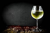 A glass of white wine against a black background