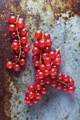 Rote Johannisbeeren auf Metallhintergrund