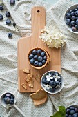 Shortcrust pastry bowls with blueberries and a bowl of blueberries with hydrangea flowers