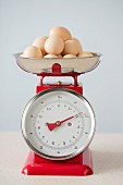 Organic eggs on pair of red vintage kitchen scales