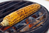 A corn cob on a barbecue