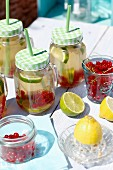 Lemonade with limes, lemons and redcurrants