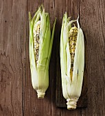 Two fresh corn cobs with butter and herbs, ready to cook