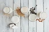 Veganer Milchersatz in Gläsern, daneben Mandeln, Reis, Hafer, Kürbiskerne und Kokosnuss