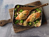 Gratinated chicken breast on Brussels sprouts