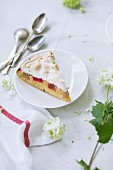 A slice of rhubarb cake with a meringue topping